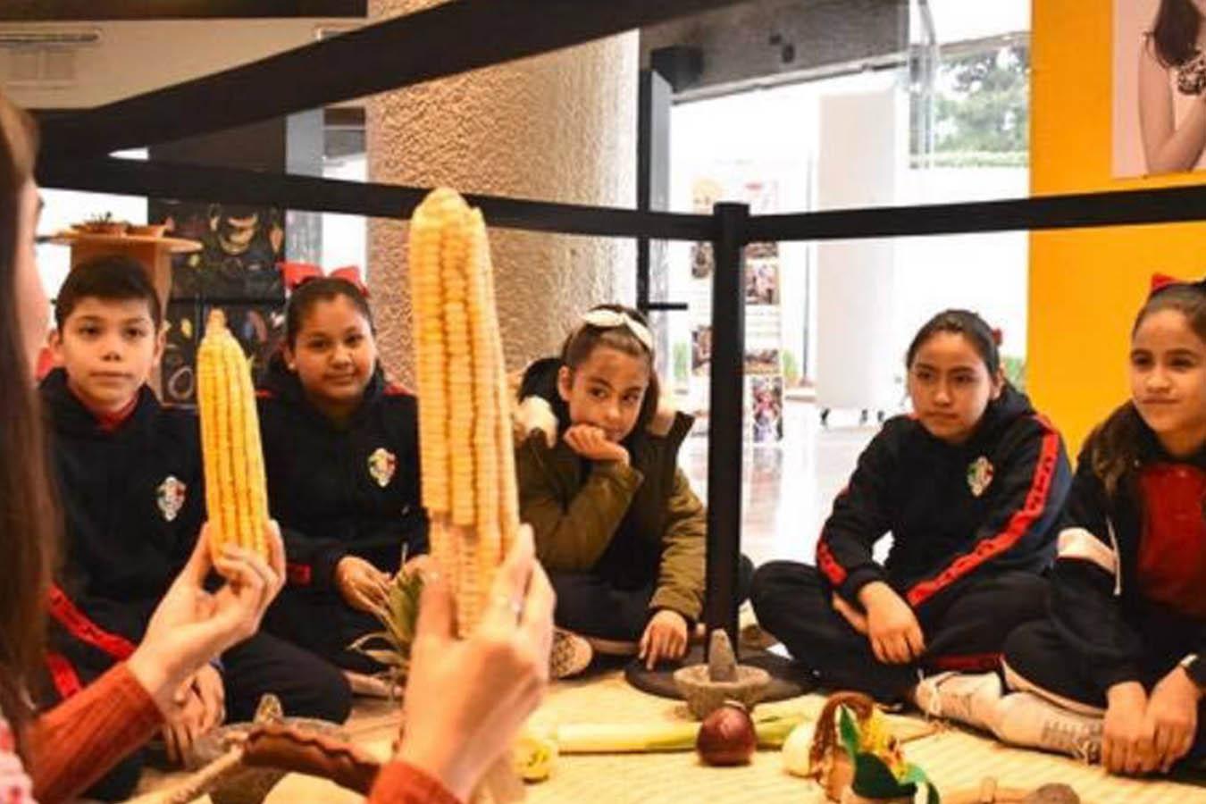Una escuela de colores educacion alimentaria slow food maiz mexicano para niños