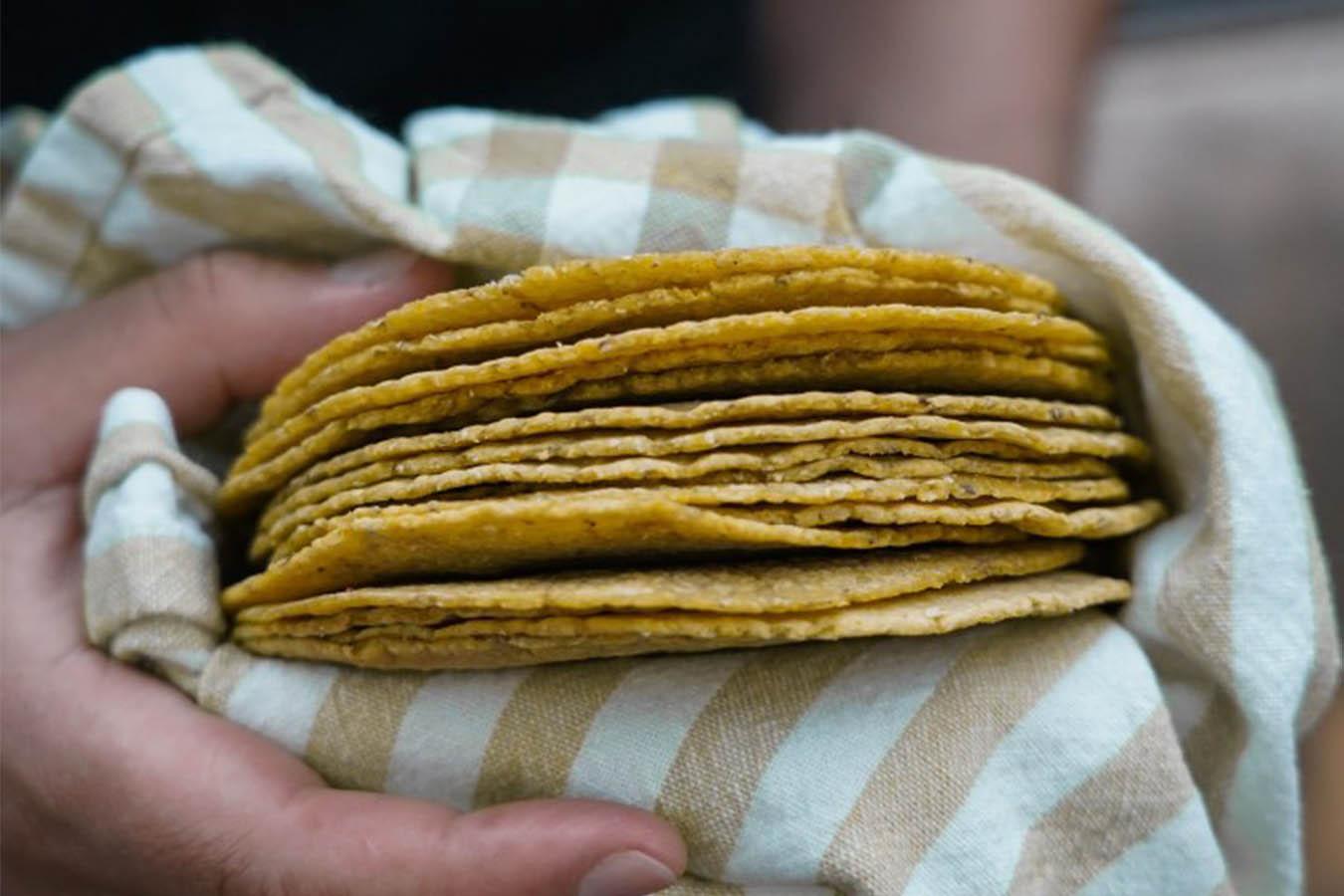 tortillas de maiz en canada victoria maiiz nixtamal tortillas para tacos canada