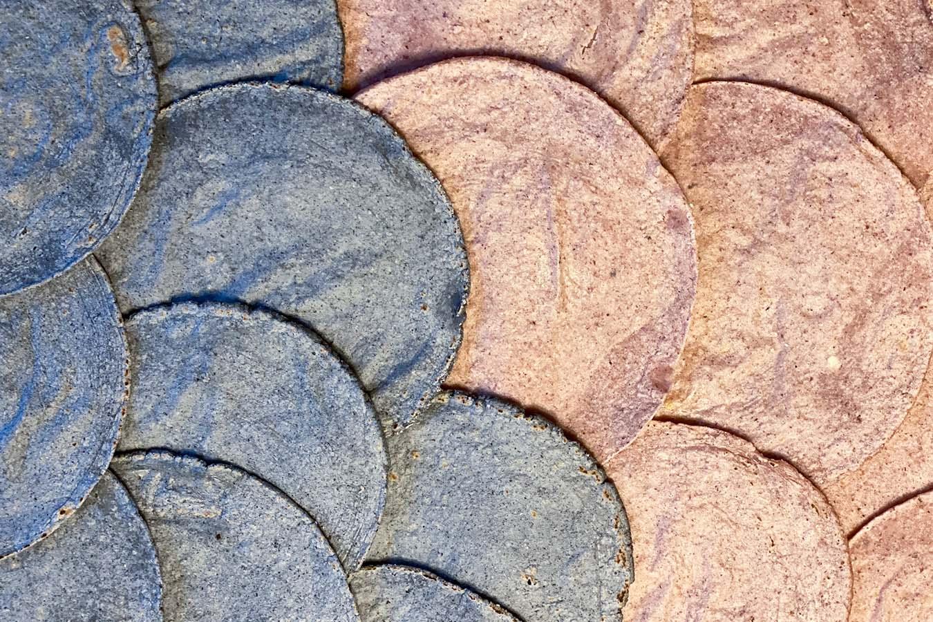 corn tortillas tortillas de maiz en estados unidos masazul